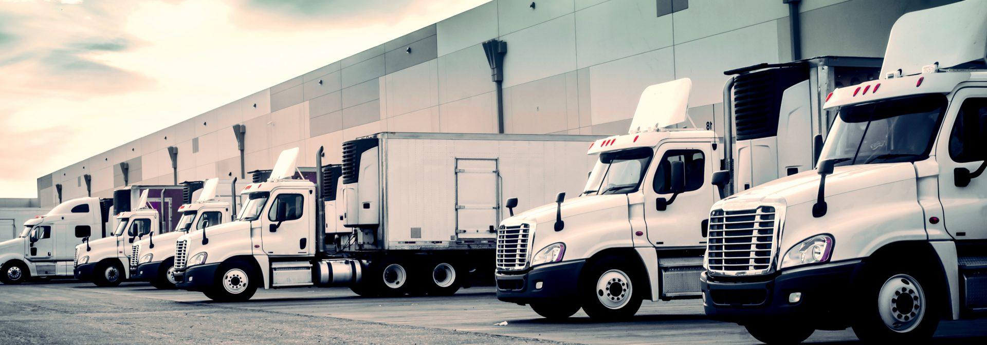 Foto van een aantal vrachtwagens die het transport verzorgen door ELCEE